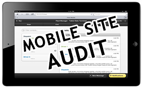 Mobile site Audit